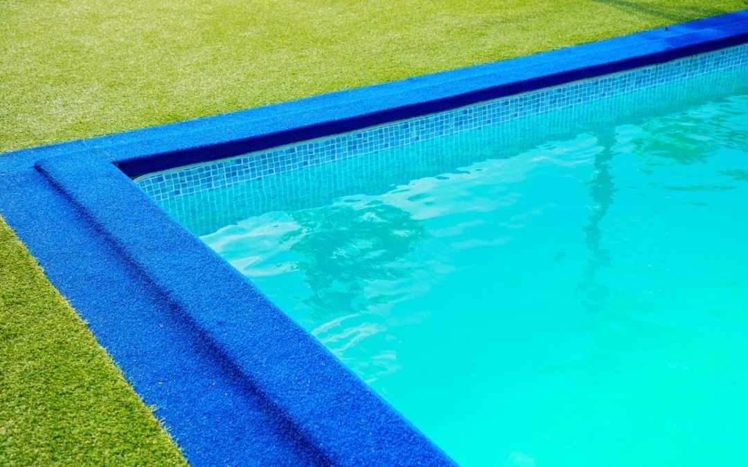 The Best Outdoor Spaces to Install Artificial Grass for Dogs in Seattle